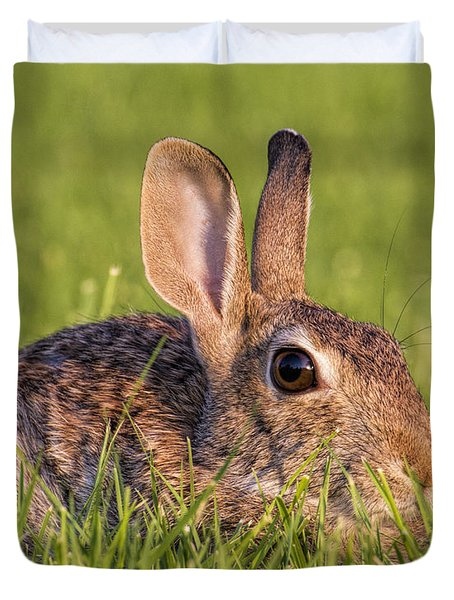 Cottontail Duvet Cover