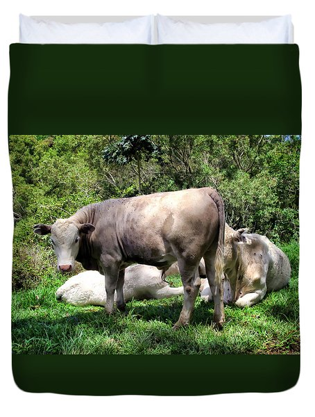 Duvet Cover featuring the photograph Cow 5 by Dawn Eshelman