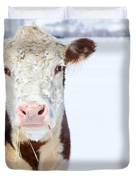 Cow - Fine Art Photography Print Duvet Cover