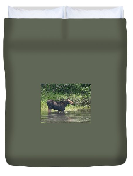 Cow Moose Breakfast Duvet Cover by Neal Eslinger