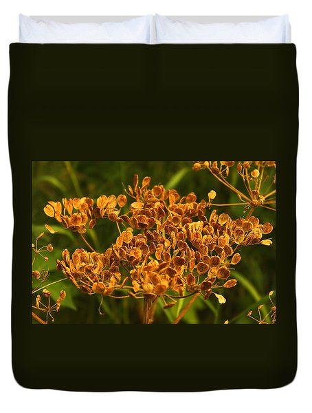 Duvet Cover featuring the photograph Cow Parsnip Seeds by Sandra Foster