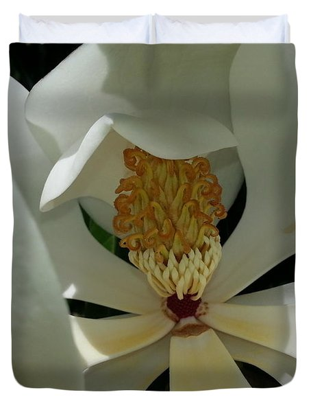 Duvet Cover featuring the photograph Coy Magnolia by Caryl J Bohn