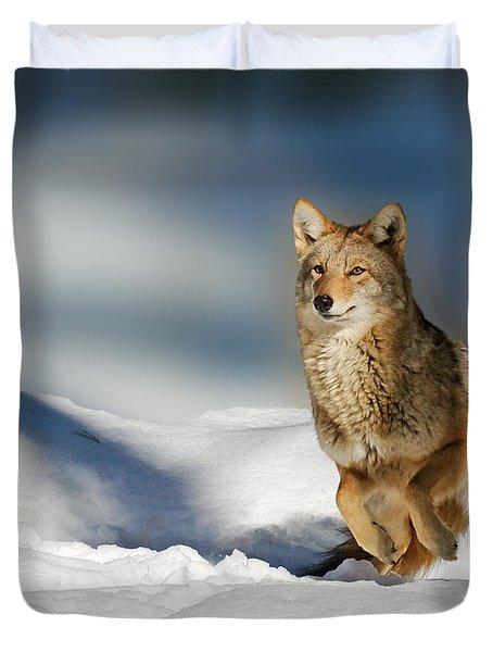 Coyote Go Go Go Duvet Cover