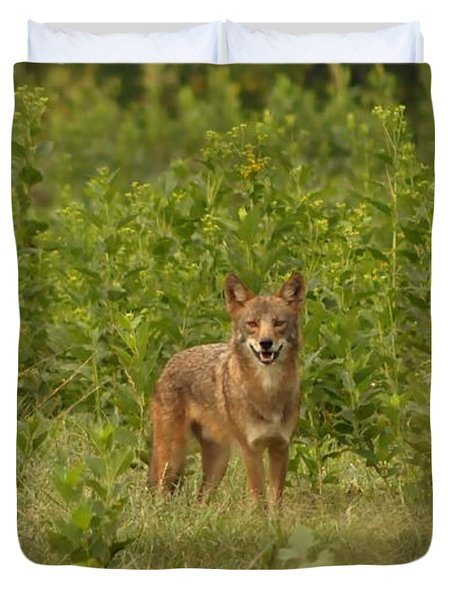 Coyote Happy Duvet Cover by Eric Liller