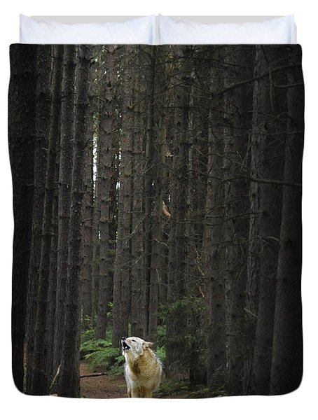 Coyote Howling In Woods Duvet Cover