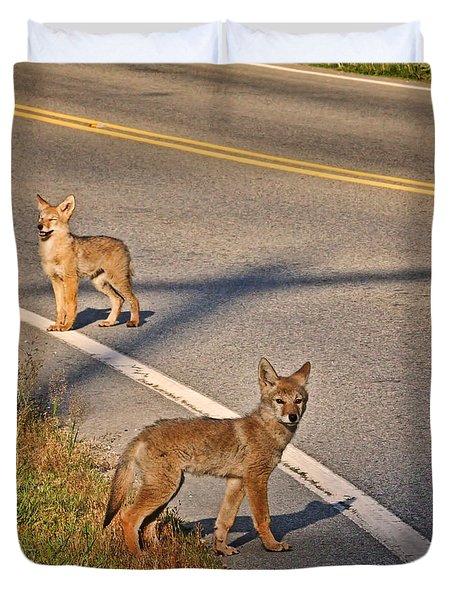 Duvet Cover featuring the photograph Coyotes At The Crossroads by Peggy Collins