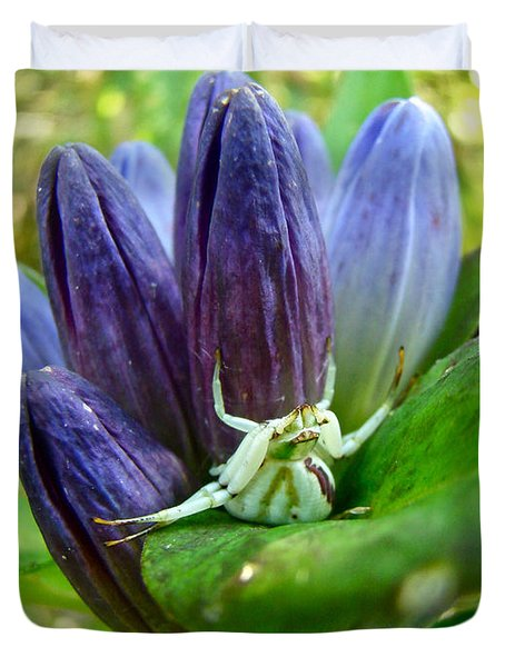 Crab Spider On Closed Gentian Wildflower - Gentiana Andrewsii Duvet Cover by Mother Nature