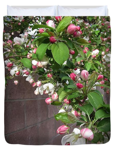 Crabapple Blossoms And Wall Duvet Cover by Donald S Hall