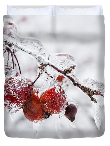 Crab Apples On Icy Branch Duvet Cover