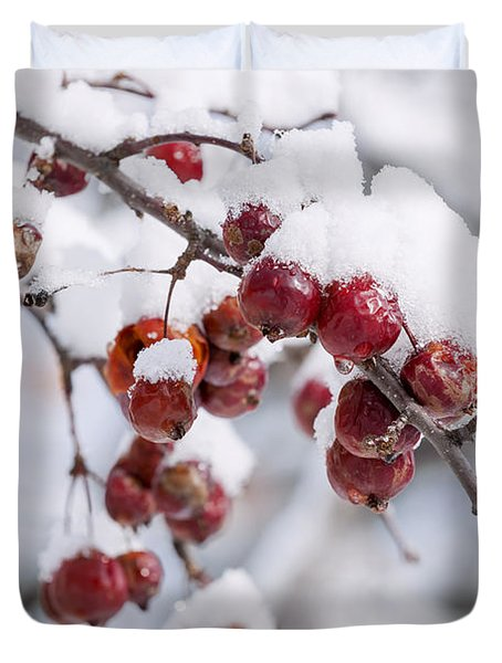 Crab Apples On Snowy Branch Duvet Cover