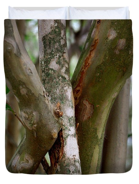Duvet Cover featuring the photograph Crape Myrtle Branches by Peter Piatt