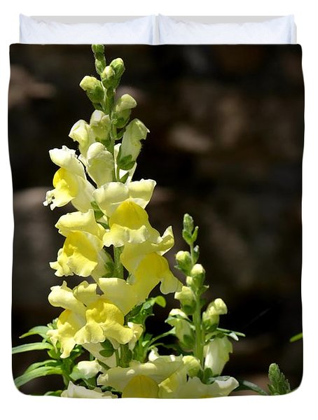 Creamy Yellow Snapdragon Duvet Cover by Maria Urso