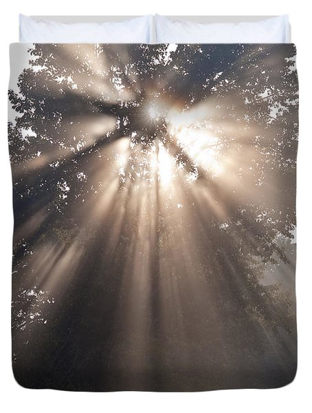 Crepuscular Rays Coming Through Tree In Fog At Sunrise Duvet Cover