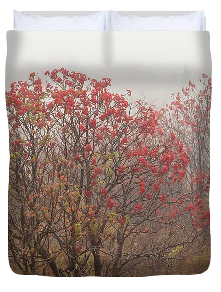 Crimson Fog Duvet Cover