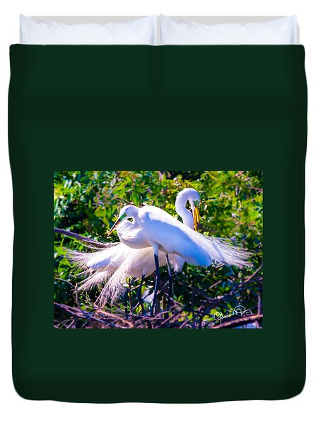 Criss-cross Egrets Duvet Cover