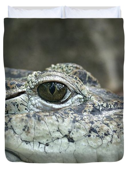 Duvet Cover featuring the photograph Crocodile Animal Eye Alligator Reptile Hunter by Paul Fearn