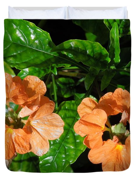 Duvet Cover featuring the photograph Crossandra by Ron Davidson