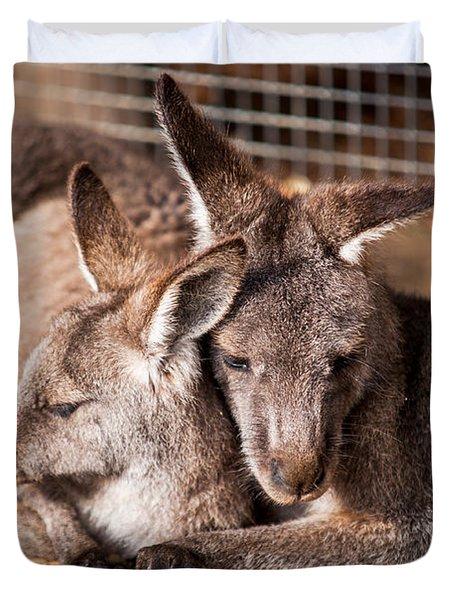 Cuddling Kangaroos Duvet Cover