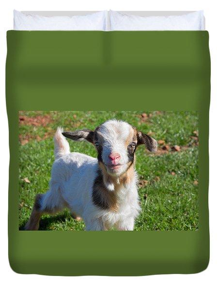 Curious Baby Goat Duvet Cover
