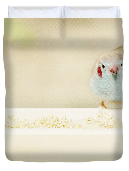 Curious Cordon Bleu Finch  Duvet Cover by Lisa Knechtel