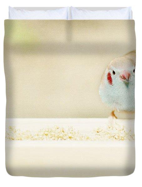 Curious Cordon Bleu Finch  Duvet Cover