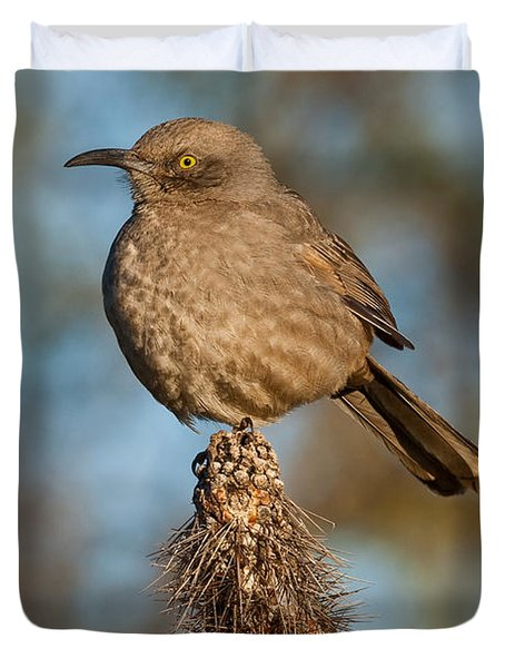 Curve-billed Thrasher On A Cactus Duvet Cover