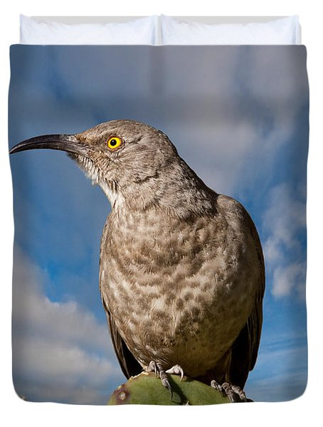Curve-billed Thrasher On A Prickly Pear Cactus Duvet Cover