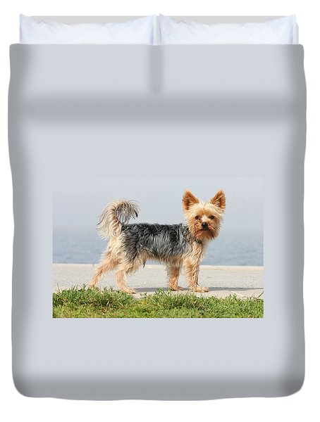 Cut Little Dog In The Sun Duvet Cover