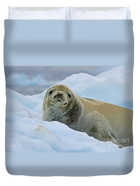 Cute And Cuddly... Duvet Cover by Nina Stavlund