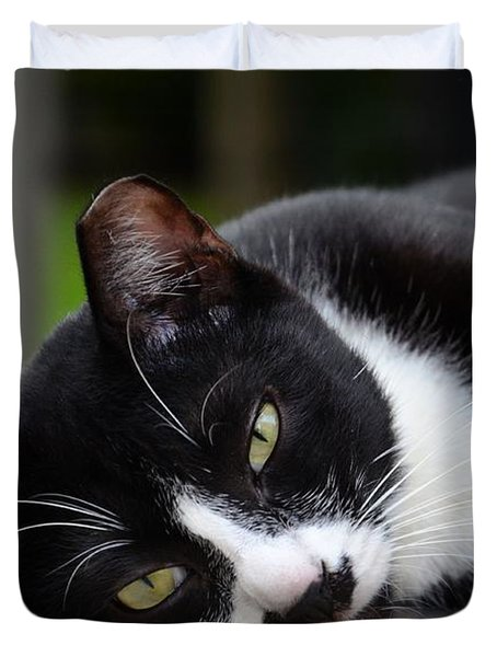 Cute Black And White Tuxedo Cat With Nipped Ear Rests  Duvet Cover