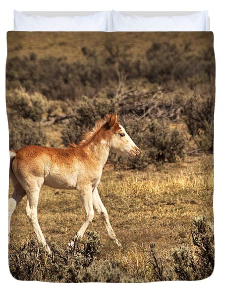 Cute Colt Wild Horse On Navajo Indian Reservation  Duvet Cover by Jerry Cowart