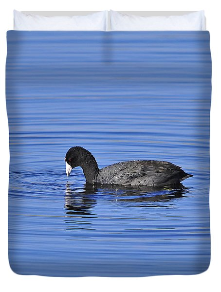 Cute Coot Duvet Cover by Al Powell Photography USA