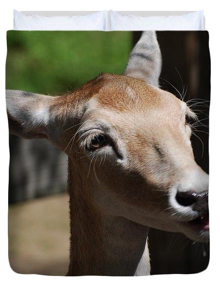Cute Deer Duvet Cover by DejaVu Designs