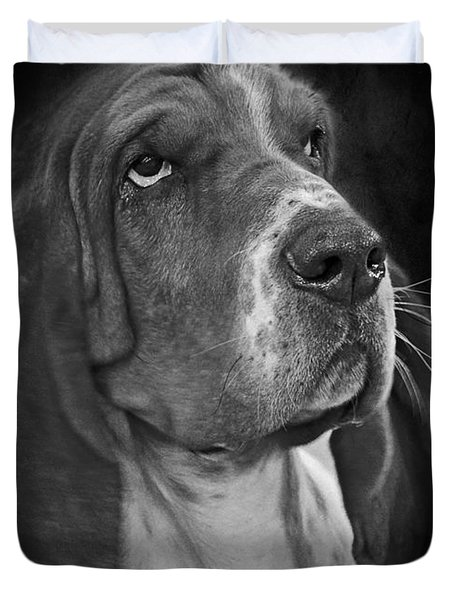 Cute Overload - The Basset Hound Duvet Cover by Christine Till