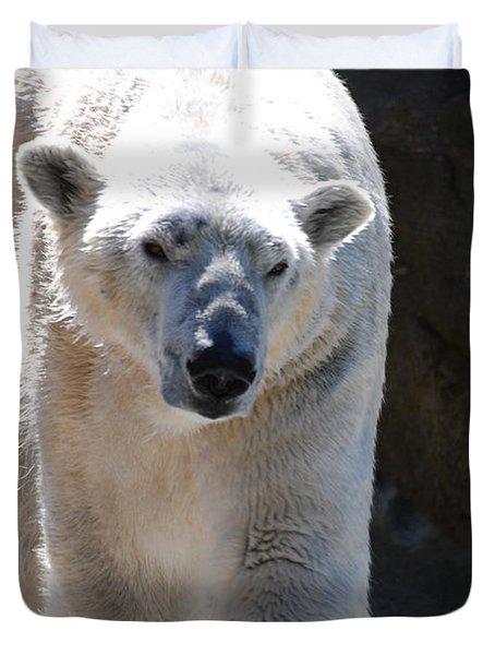 Cute Polar Bear  Duvet Cover by DejaVu Designs
