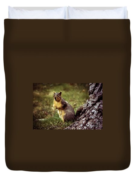 Cute Squirrel Duvet Cover by Robert Bales