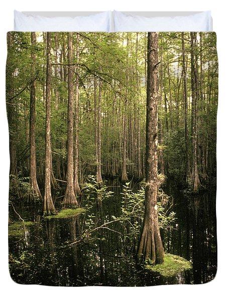 Cypress Swamp Duvet Cover by Ron Sanford