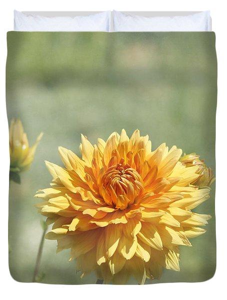Dahlia Flowers Duvet Cover by Kim Hojnacki