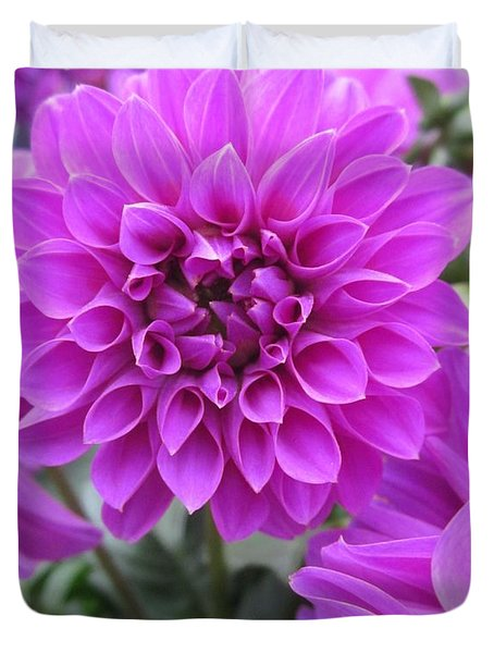 Dahlia In Pink Duvet Cover