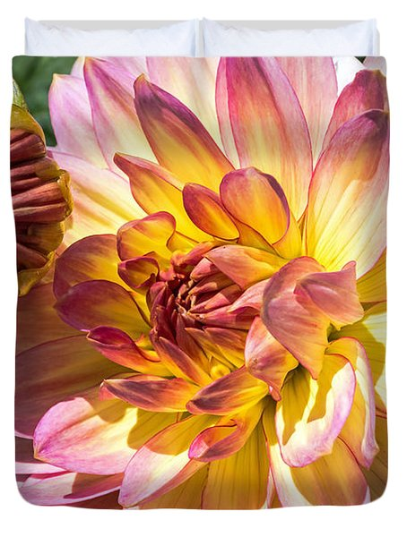 Duvet Cover featuring the photograph Dahlia by Kate Brown