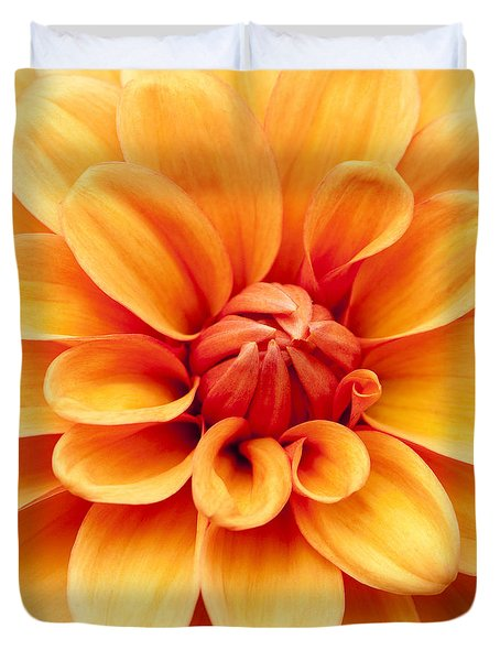 Dahlia Squared Duvet Cover by Anne Gilbert