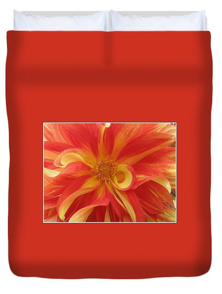 Dahlia Unfurling In Yellow And Red Duvet Cover by Dora Sofia Caputo Photographic Art and Design