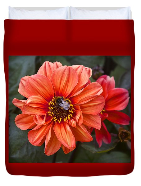 Dahlia With Bee Duvet Cover by Venetia Featherstone-Witty