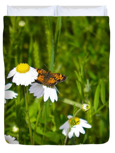 Daisey And Butterfly Duvet Cover by Nick Kirby