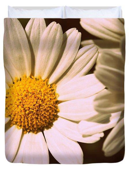 Daisies Duvet Cover by Chevy Fleet