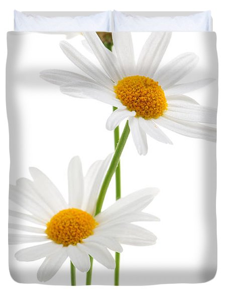 Daisies On White Background Duvet Cover by Elena Elisseeva