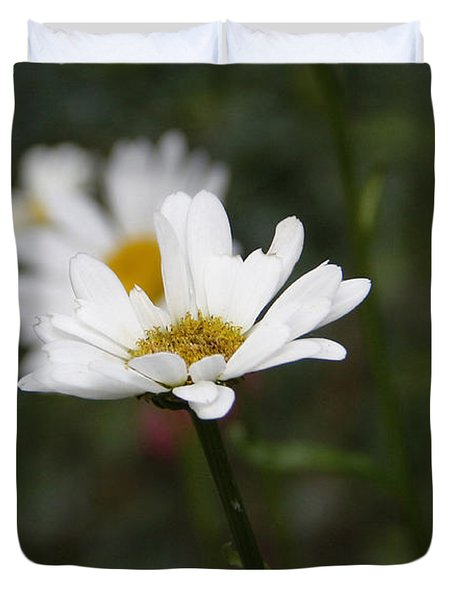 Smiling Daisies Duvet Cover by Yvonne Wright