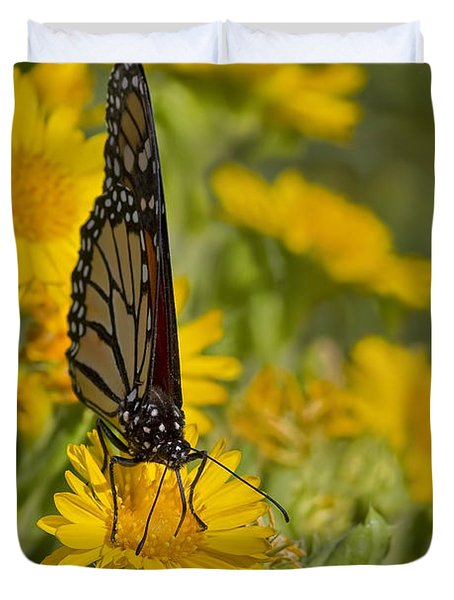 Duvet Cover featuring the photograph Daisy Daisy Give Me Your Anther Do by Gary Holmes