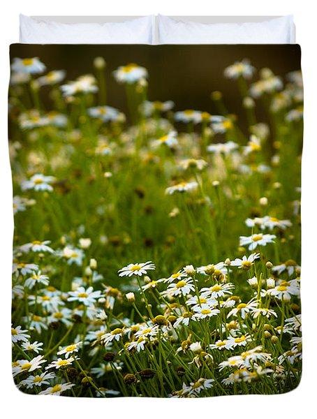 Daisy Sunrise Duvet Cover by Sebastian Musial