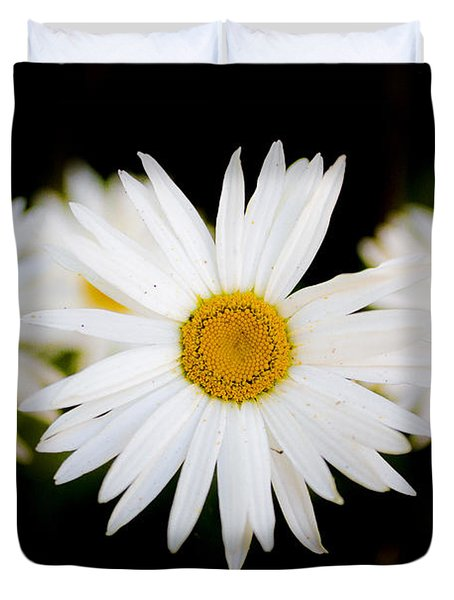 Daisy Trio Duvet Cover by Charlie Duncan